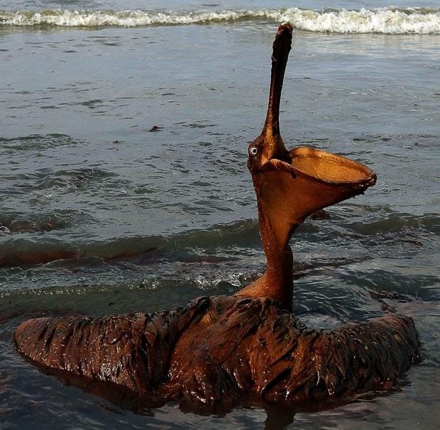 آلودگی آب با مشتقات نفتی